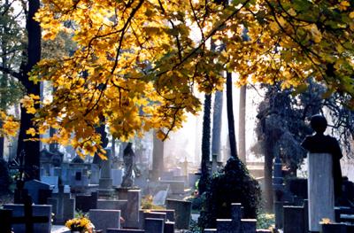 Friedhof Krakow, Polen